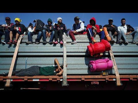 العرب اليوم - شاهد:مهاجرون يستقلّون شاحنات دجاج للوصول إلى الحدود الجنوبية بين الولايات المتحدة والمكسيك