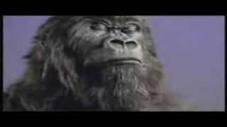 In The Air Tonight Cadburys Gorilla