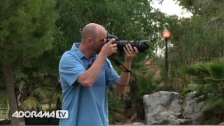 Digital Photography 1 On 1: Episode 15: Panning: Adorama Photography TV