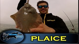 Plaice Hopping Off Bognor - Totally Awesome Fishing