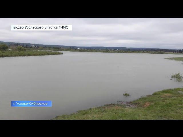 В Усолье-Сибирском утонула восьмимесячная девочка