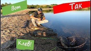 Часть 2. Улетная рыбалка на выходных. Около 100 кг карпа - дожди, солнце, ветер  и много карпа