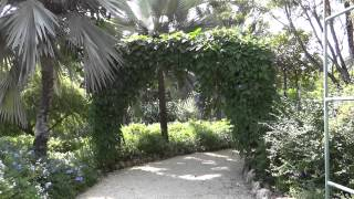 preview picture of video 'Grand Cayman - Queen Elizabeth II Botanic Park HD (2012)'