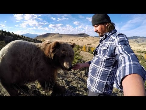 GoPro: Man and Grizzly Bear – A Unique Relationship