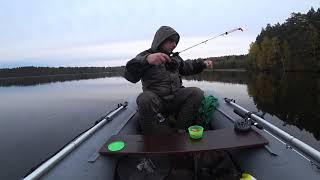 Зимняя рыбалка на озере раздолинское