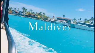 Maldives- Where Paradise Meets Reality | Maldives Travel Guide | SAii Lagoon Hilton Curio Collection