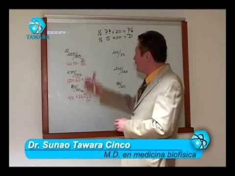 Papel de los iones de calcio en la patogénesis de la hipertensión arterial ensayo