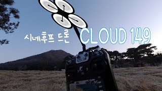 FPV Drone / Reptile CLOUD 149 Cinewhoop Practice