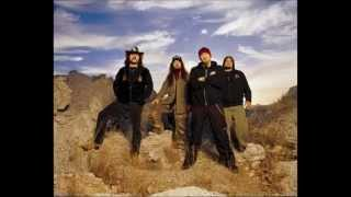 8.DAMAGEPLAN 04' -Dimebag's Solo  - Collateral Damage Live