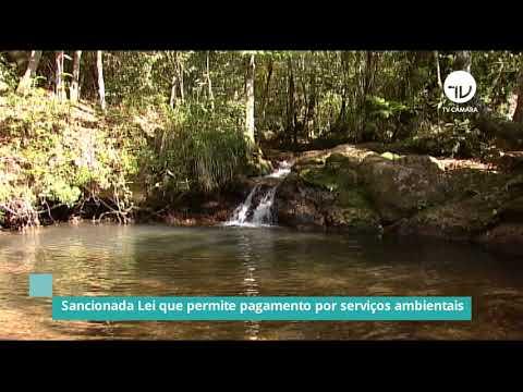 Sancionada Lei que permite pagamentos por serviços ambientais - 20/01/21