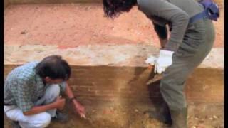preview picture of video 'Il lavatoio di Valle Fontana a Santa Maria a Monte.mov'