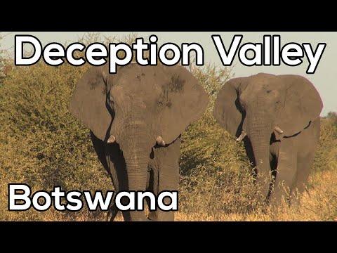 Deception Valley - Safari in Namibië & Botswana