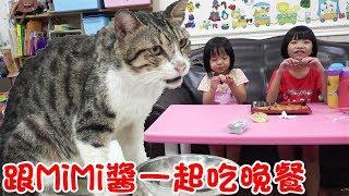 日常-第一次跟MiMi醬一起吃晚餐😍 汝汝杉杉與貓咪 MiMi Cat