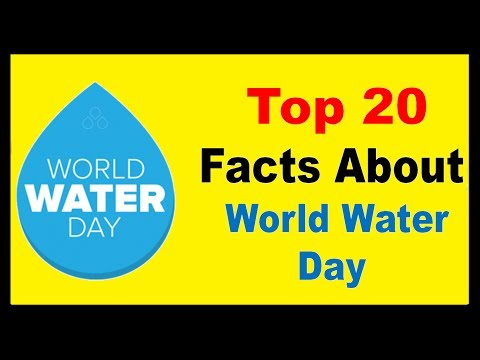 Water world day