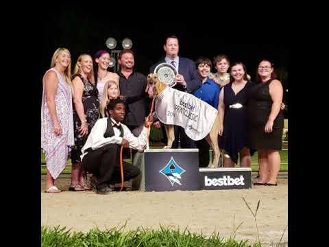bestbet Sprint Classic 2019