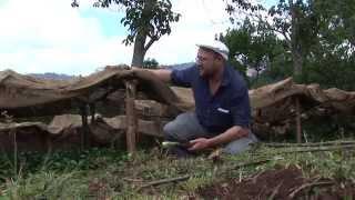 Coffee Trails - Ethiopia
