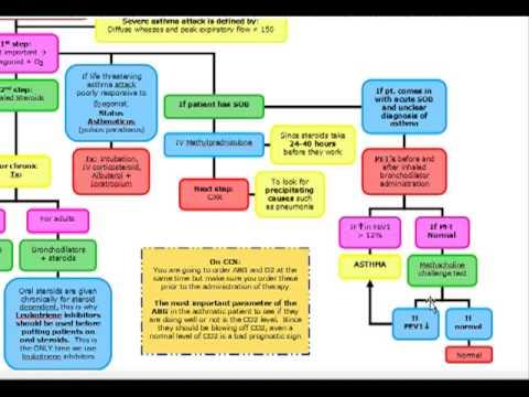 Stratégie de traitement hypertension portale