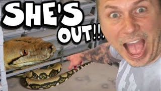 SHE LET A 20 FOOT SNAKE ESCAPE!!! CHAOS FOLLOWS!!! | BRIAN BARCZYK