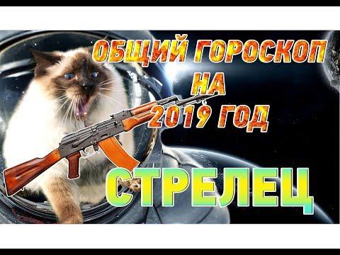 Гороскоп Стрелец на 2019 год ♐