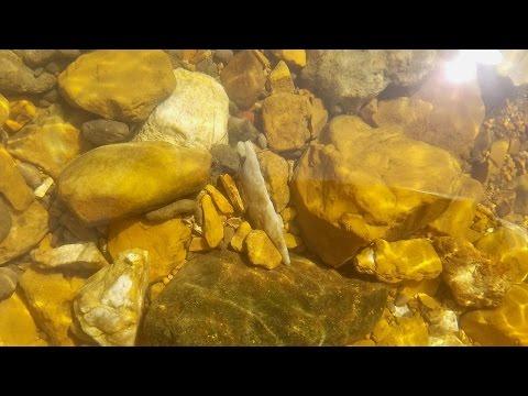 Arrowhead Hunting - Missouri Arrowheads - Killer 4 3/4