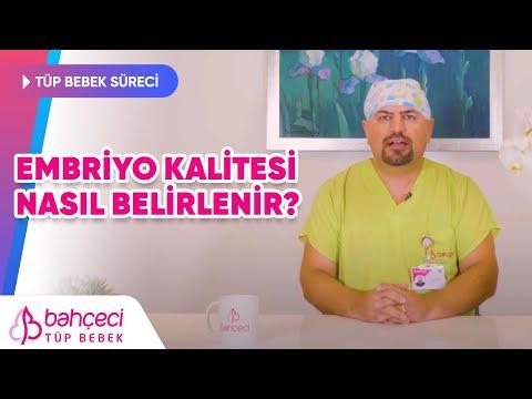 Embriyo Kalitesi Nasıl Belirlenir?