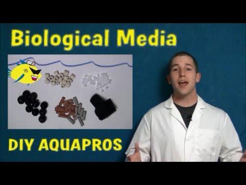 TOP 5 AQUARIUM FILTER MEDIA – BY DIY AQUAPROS