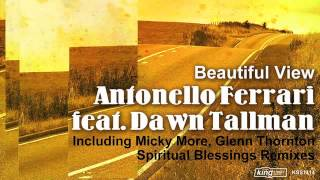 Antonello Ferrari feat. Dawn Tallman - Beautiful View (Micky More Vocal Mix)