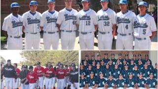Minority Presence in Baseball