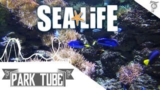 Sea Life Königswinter | Impressionen • Rundgang | Königswinter