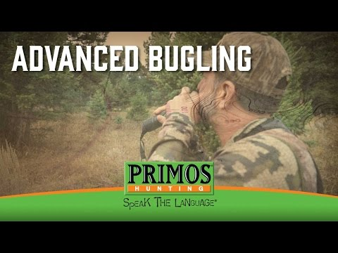 Advanced Elk Bugling Tips video thumbnail