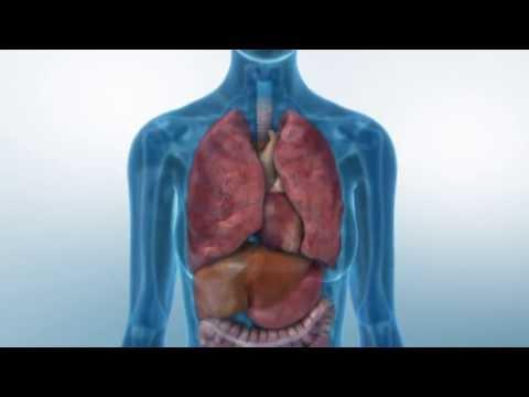 Bluthochdruck und erhöhte Herzfrequenz