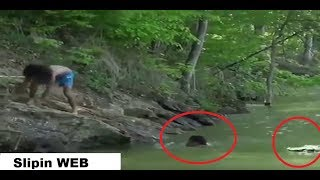 Brave Man Saves His Friend from Crocodile Attack