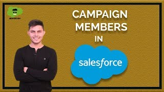 What is Campaign Member in Salesforce? | How to add Leads and Contacts in Campaign object's record?