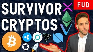 Which cryptos will survive the bear market? BTC ETH ICX VET WTC ZRX XRP XLM ONT TKY TRX