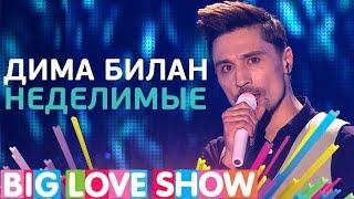 Дима Билан - Неделимые [Big Love Show 2017]
