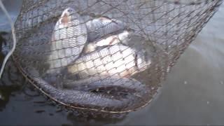 Рыбалка на озере щелкун свердловская обл