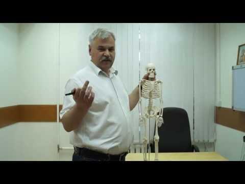 Лечение суставов грязью сакского озера