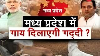 Modi slams Congress of having double standards on cow
