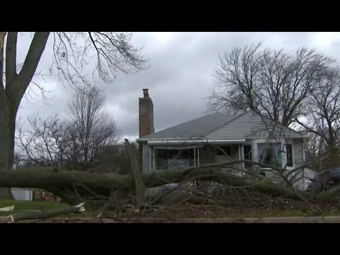 Intense wind topples trees, causes mass power outages throughout SE Michigan