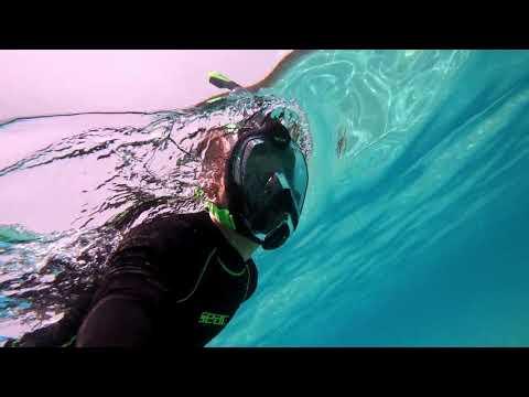 [NEWS] Masques faciaux de snorkeling SEAC, l