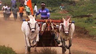 Nimishada Bandi Bullock Cart Race At Lokapur # 2