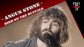 "Angus Stone ""Bird On The Buffalo"" (Live on TV show Taratata)"
