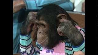 Live Dick Clark Presents 02 Michael Jacksons monkey Bubbles