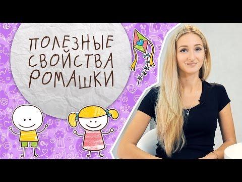 Детский сад 186 веснушка в архангельске