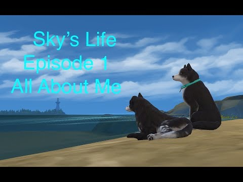 Episode 1 All About Me   Sky's Life   Sims 4
