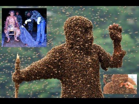 Video Di China, seorang pria pecahkan rekor sebagai manusia dikerumuni lebah
