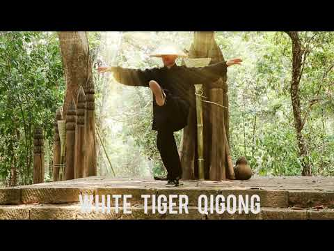 Welcome to White Tiger Qigong - YouTube
