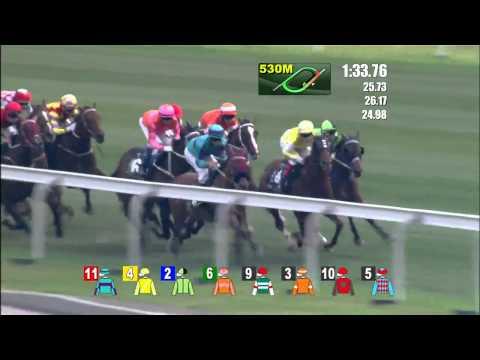 2015/4/26(日) クイーンエリザベス2世カップ(G1)