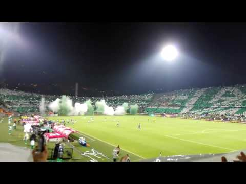 """TIFO FINAL COPA COLOMBIA ATLÉTICO NACIONAL VS JUNIOR"" Barra: Los del Sur • Club: Atlético Nacional"