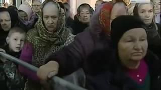 Свыше 20 тыс  курян смогли поклониться мощам святителя Луки